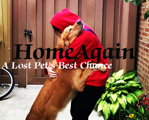 10% OFF Home Again Promo Coupon Code