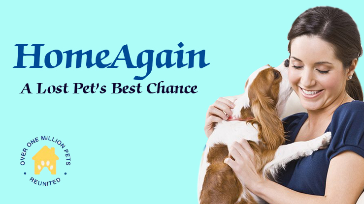 Home again promo codes